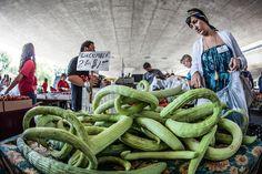 Urban Farming in Sacramento.