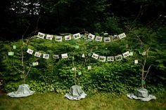 tree skirts, weddings, trees, memori lane