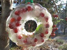 cranberri, natur ice, ice mold, nature, kerst winter, ice wreath, kid craftsprojectsact, christma, wreaths