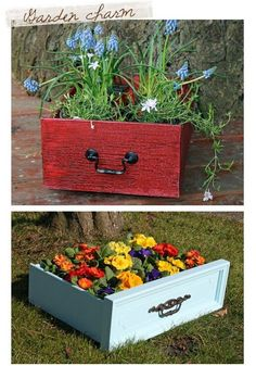 Flowers in old drawers ~ nice