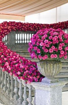 colorful flowers, pink roses, pink flowers, spring weddings, grand entrance