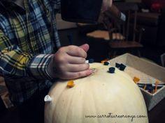 Montessori Inspired Pumpkin Unit