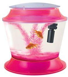 Fish tanks on pinterest fish tanks aquarium and home for Pink fish tank