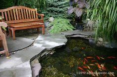 A beautiful pond!