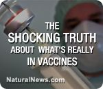 New Health Ranger video exposes the truth about MSG, mercury and formaldehyde in vaccines