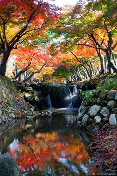 Autumn Colors in Nara, Japan