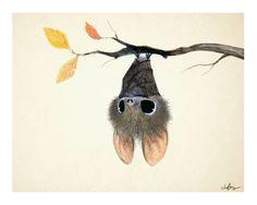 anim, bat drawing, bats art, charact design, character design, batti, illustr, happy halloween, sydney hanson