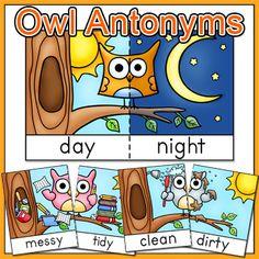 Antonyms - Owl Anton