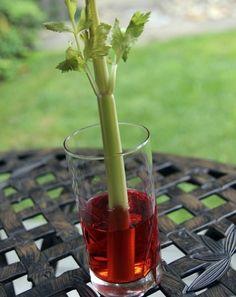 Activities: Celery Science Experiment