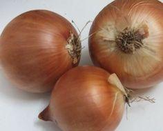 Receta de mermelada de cebolla casera | Ajetes.Com