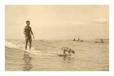 vintage surf pics