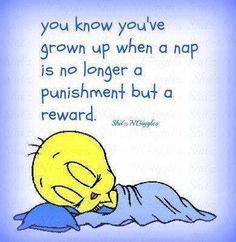 a nap life quotes quotes quote life quote tweety bird
