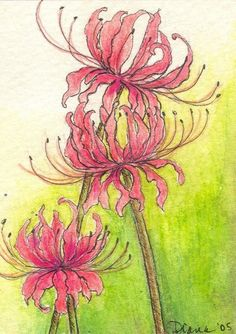 Spider Lillies would be easy drawing... would change the color scheme