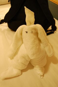 Royal Caribbean Mariner of the Seas towel rabbit by Fannie Chao, via Flickr