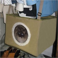 The Closet Sleeper Cat Bed is a great way to keep  cats from napping on top of your freshly folded clothes. And, since it goes in the closet, it doesn't spoil the decor of your room. See more at http://www.furniturehomedesign.com/category/pets/page/2/#sthash.a1dpzDqZ.dpuf