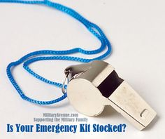 Is your Emergency Kit Stocked?  A few things not to forget.