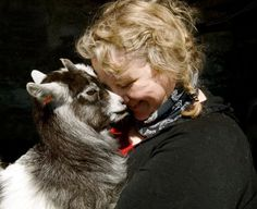 #goatvet likes this campaign to save the Icelandic Goat From Extinction | Indiegogo
