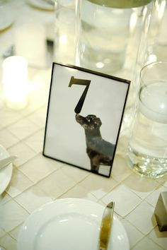 table number.