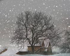 winter photographi, winter trees, winter photography, winter wonderland, snow, white, fine art photography, barns, christma