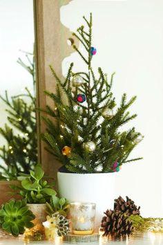 #Christmas #Tree #AnthroBlog