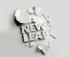 A new leaf by Shaz Madani