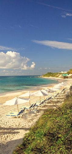 #Jetsetter Daily Moment of Zen: CuisinArt Resort & Spa in #Anguilla