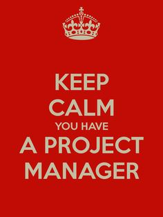 Funny Manager Quotes Keep calm you have a project