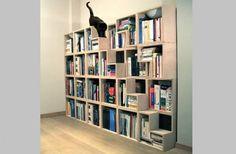 Estante para Livros & Gatos