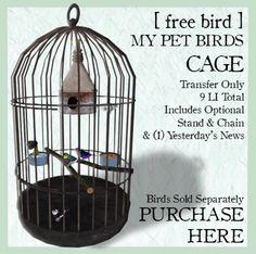 [ free bird ] http://maps.secondlife.com/secondlife/Sky%20High/146/130/23