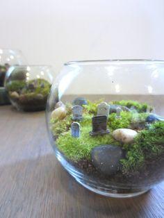 Hold Your Breath....Graveyard Moss Terrarium Miniature Terrarium