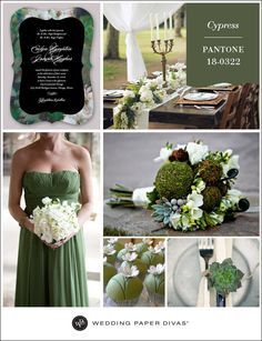 #Pantone Cypress Inspiration Board | Wedding Paper Divas Blog #inspiration #wedding
