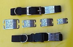 Pet Collar Tags, Non-traditional Pet ID pet collar, collar tag, nontradit pet, collar option