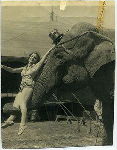 circo*