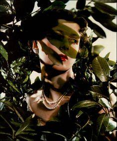 Madame Yevonde: The Hon. Mrs James Beck as Daphne, 1935.