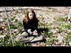 Wild Edible Plants of Early Spring