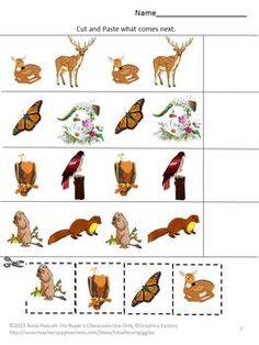life of pi animal behavior essay