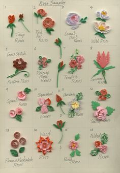 A sampler of roses... Make these and more in our '80 Quilled Roses' book - Jane Jenkins Quilling Books quill rose, quill book