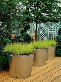 Grasses Shine in Stainless Steel Planters --> www.hgtvgardens.c...