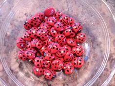 ladybug m & m's