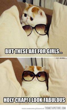 <3 Funnies