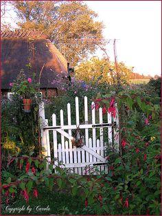 white picket garden gate  // Great Gardens & Ideas //