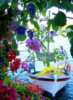 Beautiful! Flowers and boat.