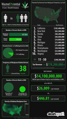 Marijuana Legalization Infographic