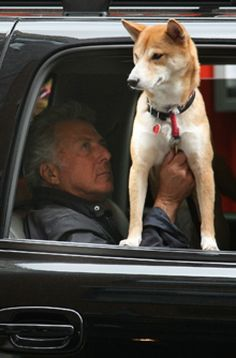 Dustin Hoffman and his dog.