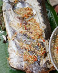 Fish Grilled in Banana Leaves with Chile-Lime Sauce Recipe on Food & Wine