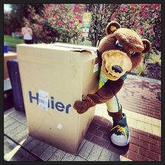 Everybody pitches in a hand (or paw) for #Baylor Move-In -- even Bruiser! #SicEm #Move2BU (via BaylorUniversity on Instagram)