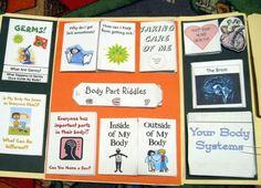 Kindergarten complete body lapbook