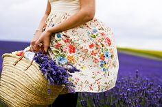 Tasmin in the lavender field