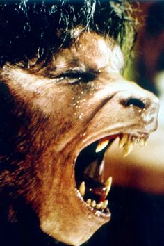 """Academy Award Winning Make-Up from RICK BAKER for 1981's """" AN AMERICAN WEREWOLF IN LONDON """" Directed by John Landis."""