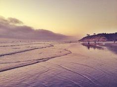 Del Mar Sunset | Covet Living